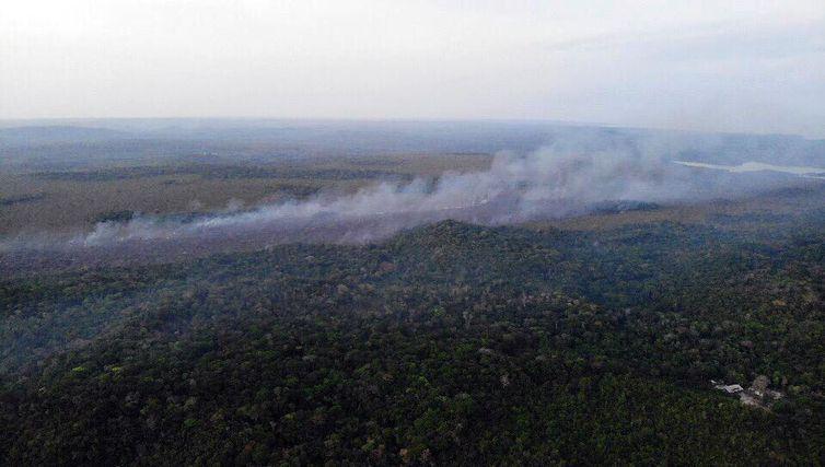Brigadistas que deveriam COMBATER INCÊNDIO são presos suspeitos de atear fogo em área do Pará (Alter do Chão)