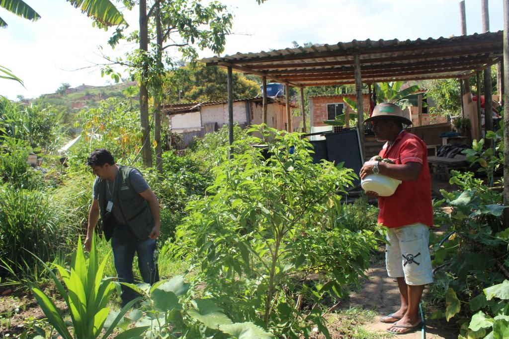 Em BH/MG: Curso da Prefeitura promove qualificação em Agroecologia