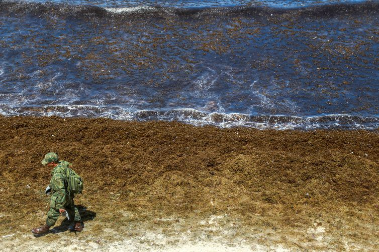 Óleo continua se espalhando e atinge novas praias de Pernambuco: mais 5 praias estão contaminadas!