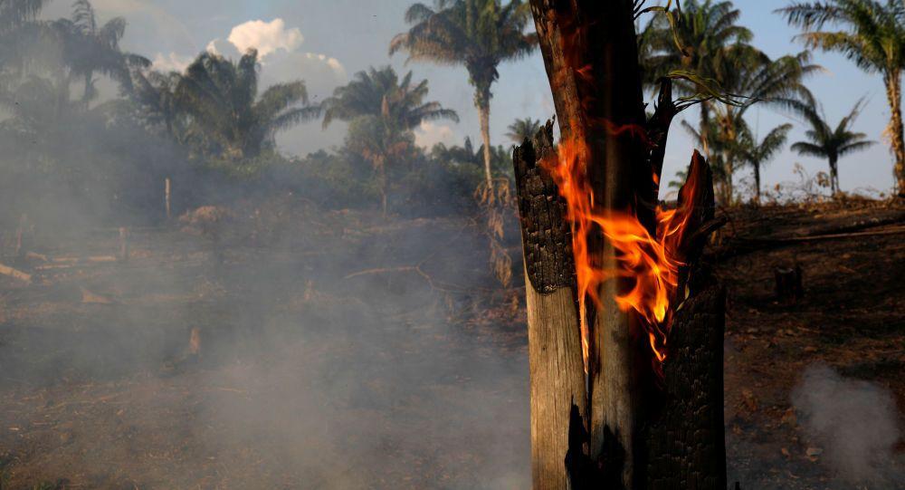 Polícia do Pará identifica suspeitos de provocar queimadas na Amazônia e encontram TRABALHADORES em regime semelhante a ESCRAVIDÃO