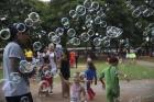 Sem bebida alcoólica! Baratinha colore o Parque da Cidade em Brasília